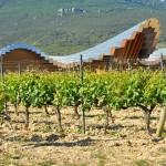 ¿Dónde alojarse en La Rioja para hacer enoturismo?