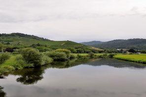 Ruta de 5 días por La Selva Negra y Alsacia (Parte I: Selva Negra)